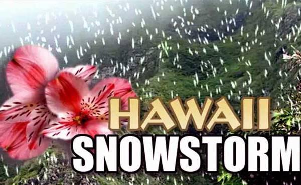 Hawaii snowstorm_155649