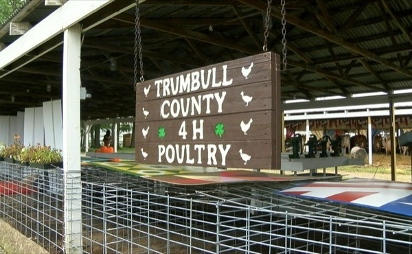 No poultry at Trumbull County Fair_155639