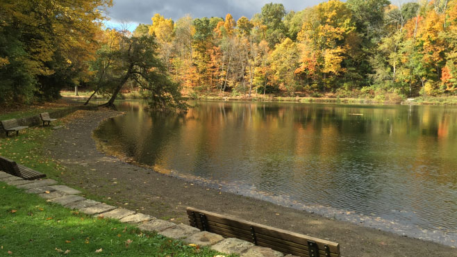 Mill Creek MetroParks Lily Pond to be rehabbed_176433