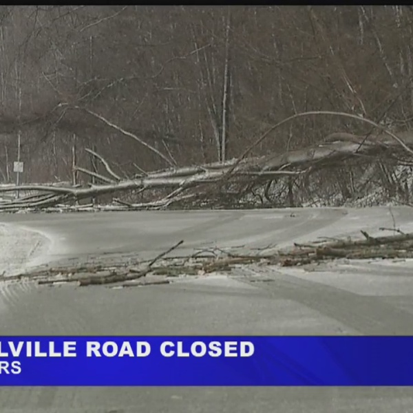 Downed wires temporarily close Lowellville Road in Struthers
