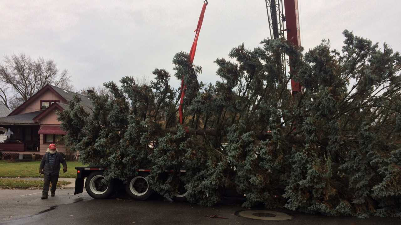 Youngstown Christmas tree