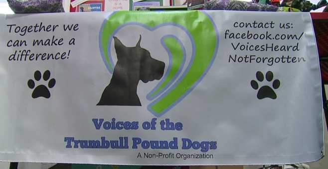 Voices of Trumbull Pound Dogs