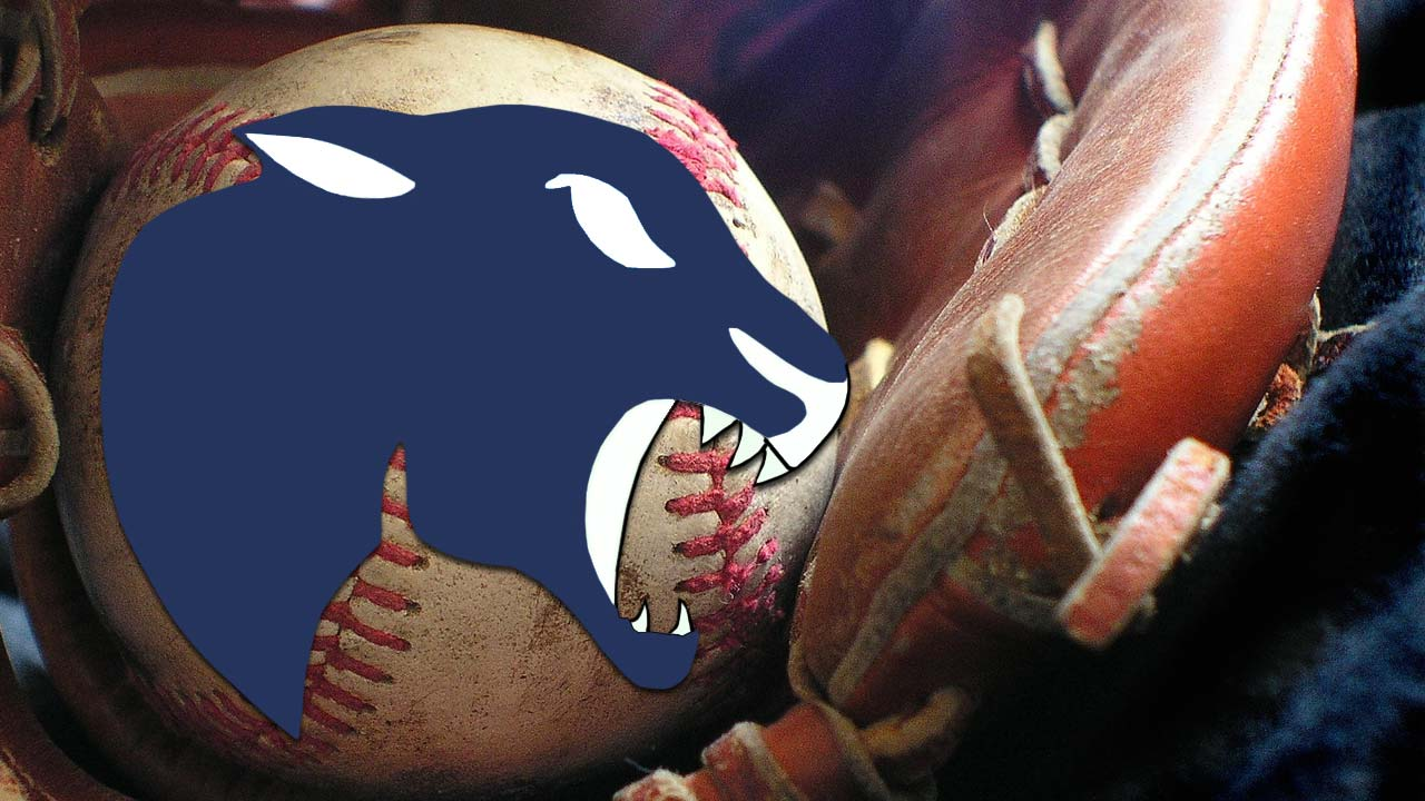 Bristol Panthers baseball