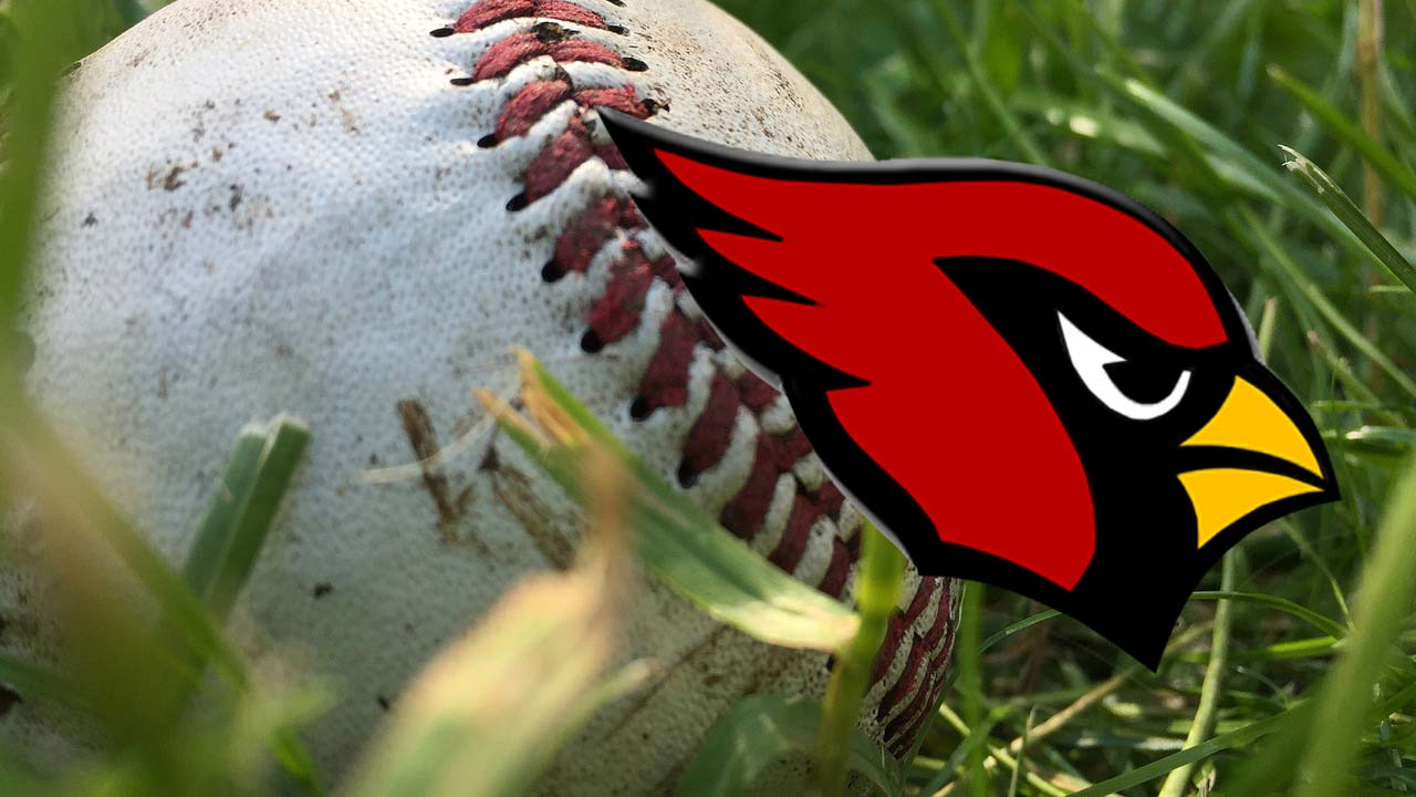 Canfield Cardinals baseball