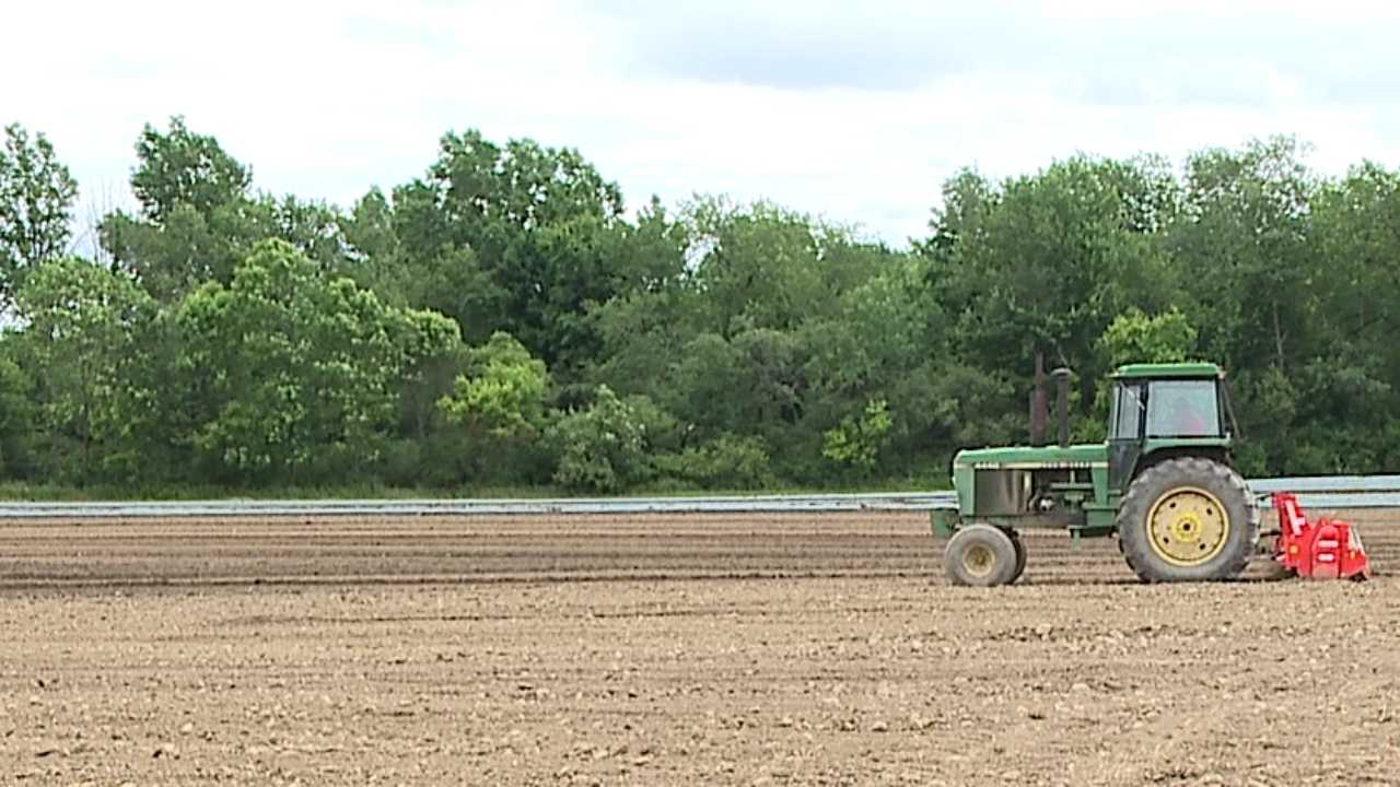 Farm, tractor, field generic
