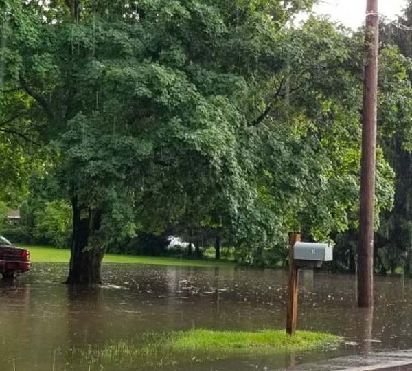 Flooded yard in Bessemer, Pennsylvania, submitted by Diane W.