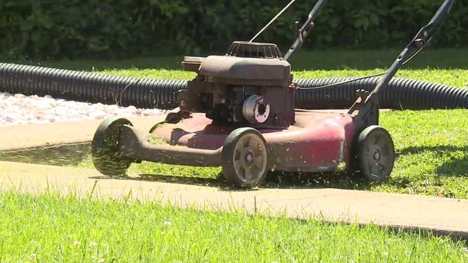 Lawnmower, grass generic