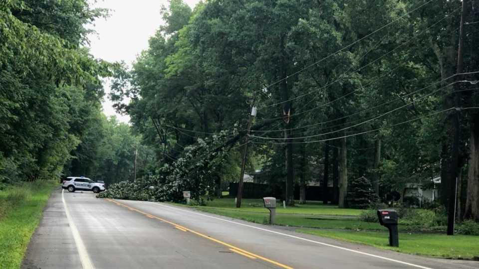 Tree down on Lockwood Boulevard