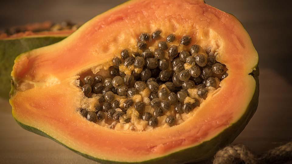 Papaya generic
