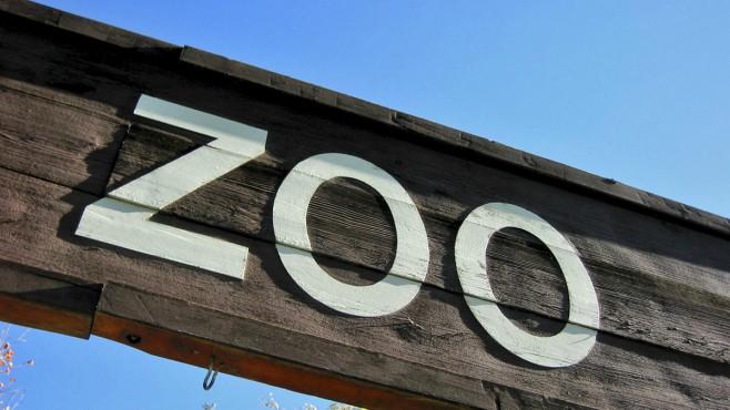 Zoo Generic_418327