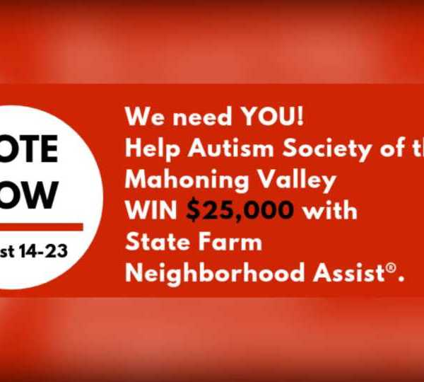 Autism Society of Mahoning Valley, State Farm contest