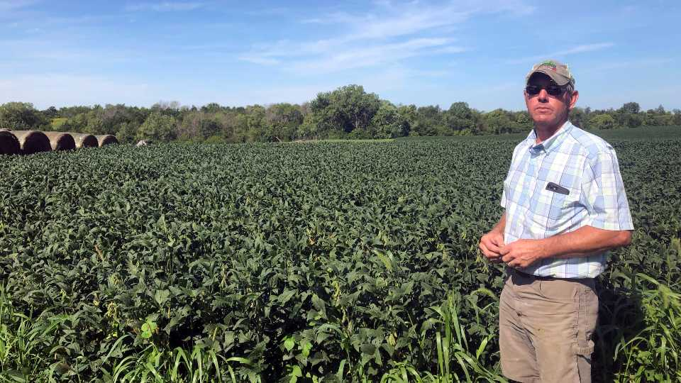 Farmers losing patience with President Trump