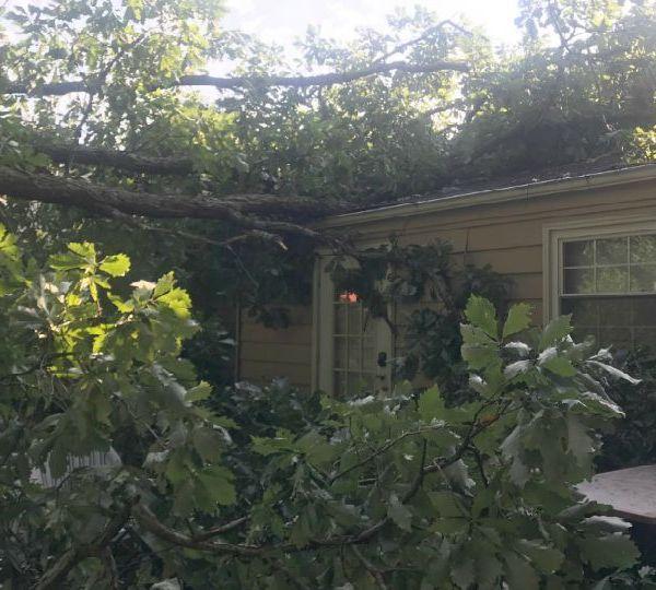 House damaged by fallen tree in McDonald, Ohio