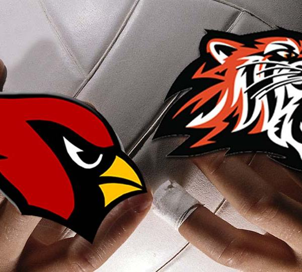 Canfield Cardinals Howland Tigers volleyball