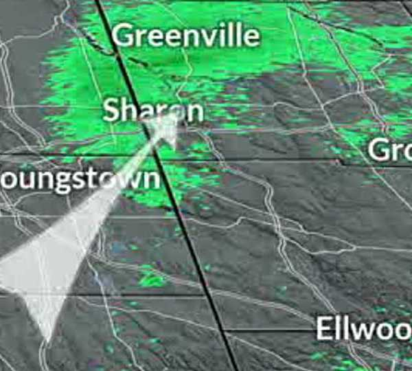 Dragonflies migrating appear on weather radar