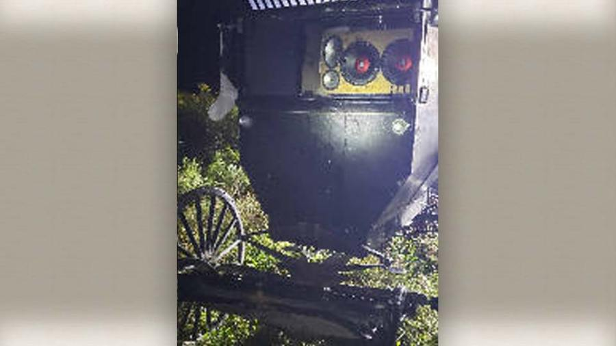 Two Amish males abandon horse buggy while DUI