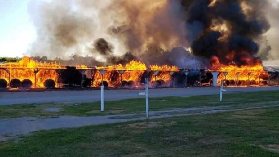 Rogers Flea fire.