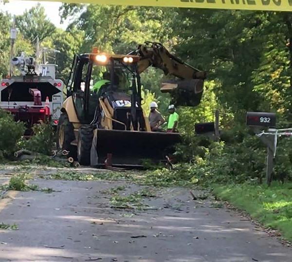 Tree down on Hazen Road in Sharpsville, Pennsylvania.