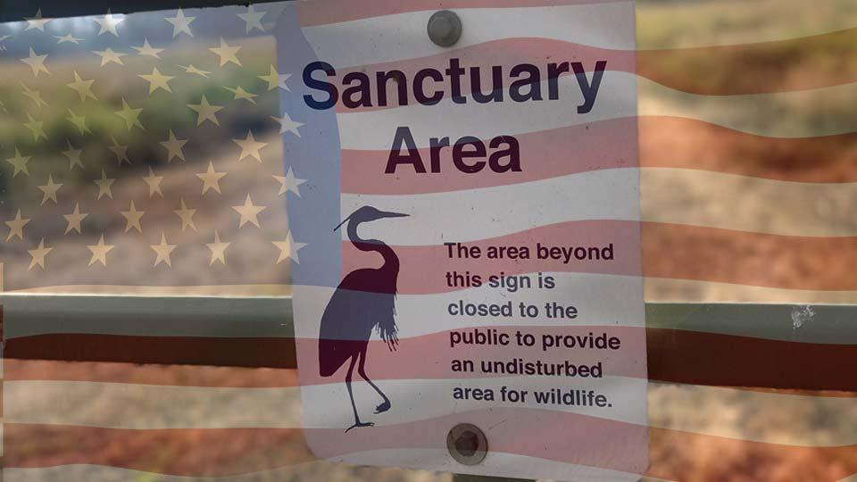 United States endangered