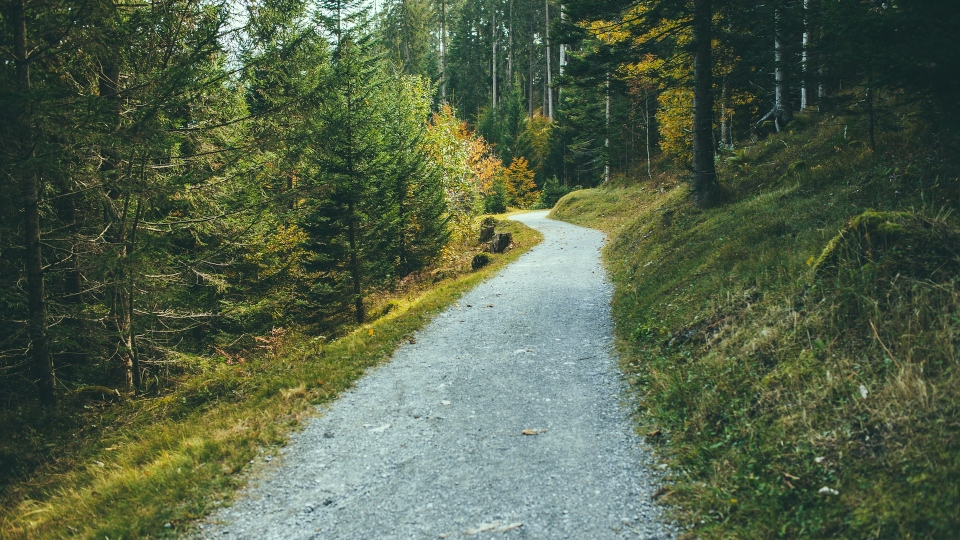 Walking, hiking trail