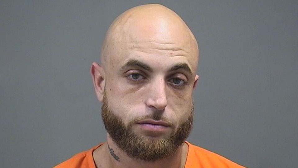 Donald Mulholland, 34, of Austintown, is in the Mahoning County Jail on charges of carrying concealed weapons and being a felon in possession of a firearm.