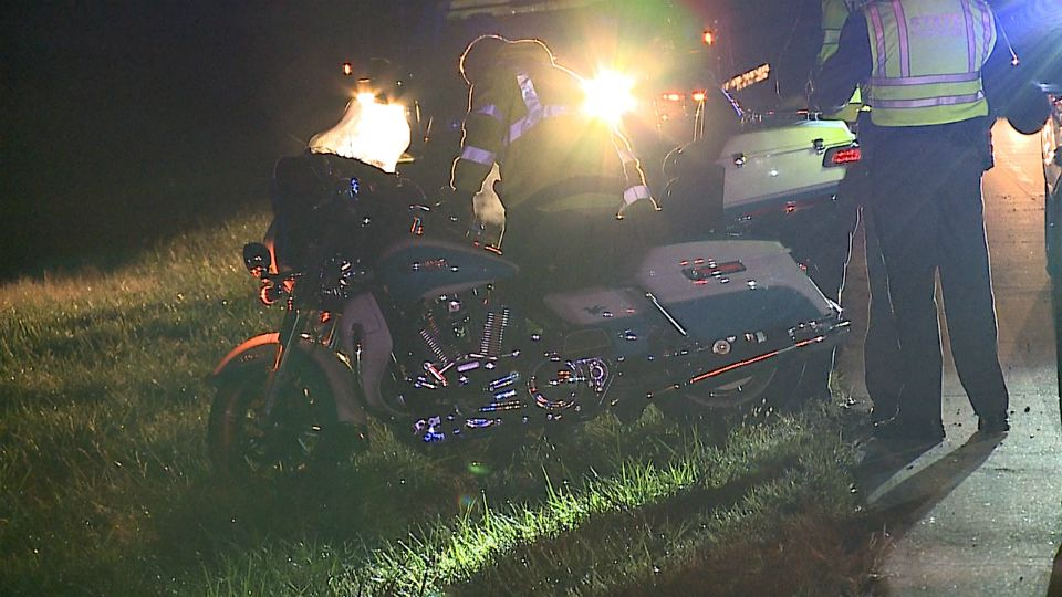 A motorcycle driver hit two cows in Ellsworth Twp., Ohio.