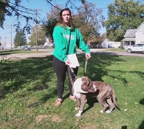 Woman says police shot her pit bull.