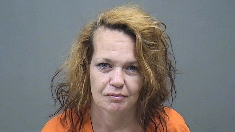 Nicole Corbett, charged with possession of cocaine and possession of drug paraphernalia in Youngstown, Ohio.