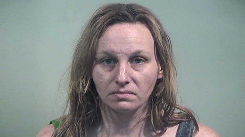 Stephanie Carlson, charged with arson, inducing panic and criminal damaging