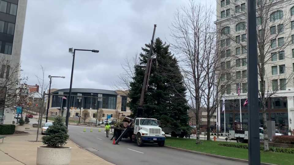 youngstown christmas tree 2019