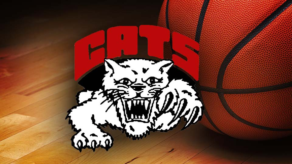 Struthers Wildcats high school basketball