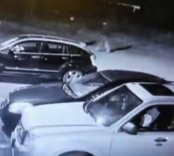 Police have released surveillance video showing two men they believe robbed a woman in Warren.