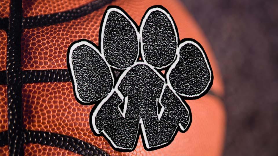 Wellsville basketball logo.