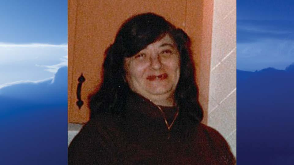 Nancy J. Ceplece, North Lima, Ohio - obit