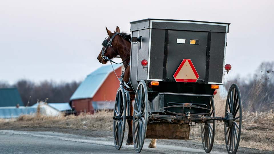 Amish buggy generic