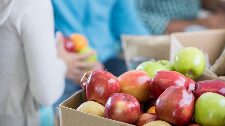 Food banks, fresh fruit.