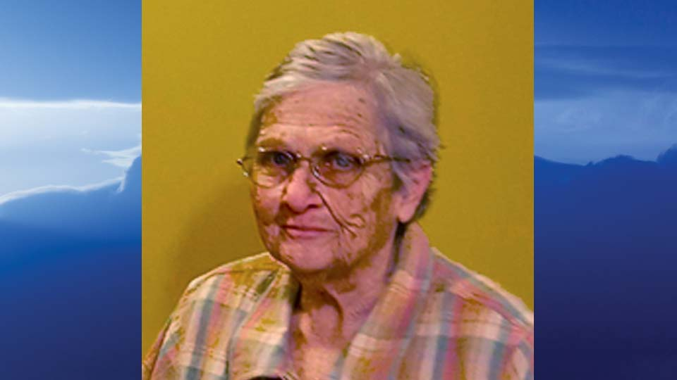 Nancy Ann Kelley, New Springfield, Ohio - obit