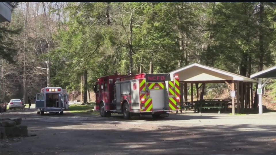 Tree falls on mother and daughter in New Castle park.