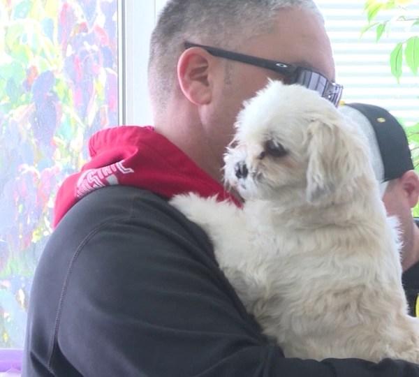 Social distancing pet adoption.