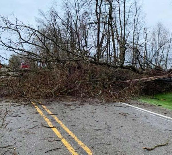 Tree Down Lawrence Co. SR 288
