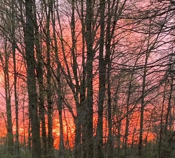 Austintown sunset