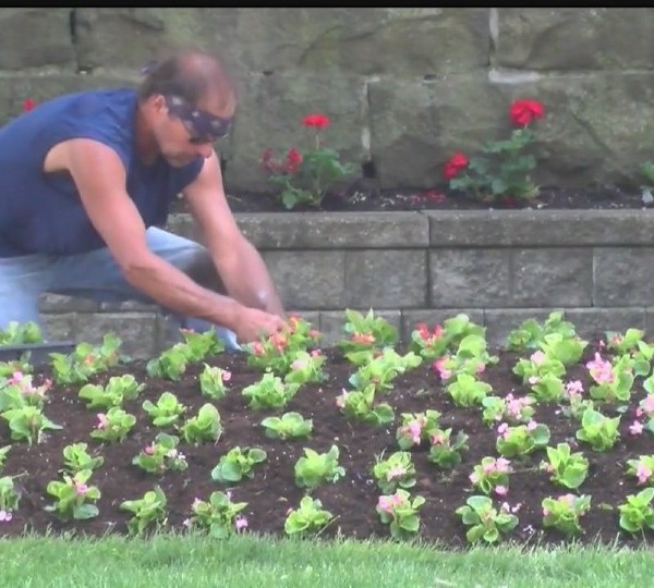 Youngstown CityScape's StreetScape event