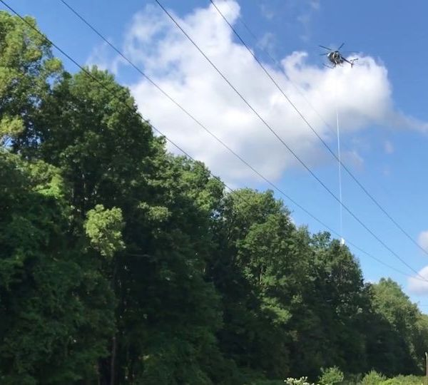 First Energy is taking to the air to survey power lines and trim trees in Western Pennsylvania and Northeast Ohio this summer.