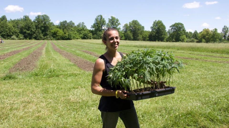 Westerville, Ohio hemp farmers.