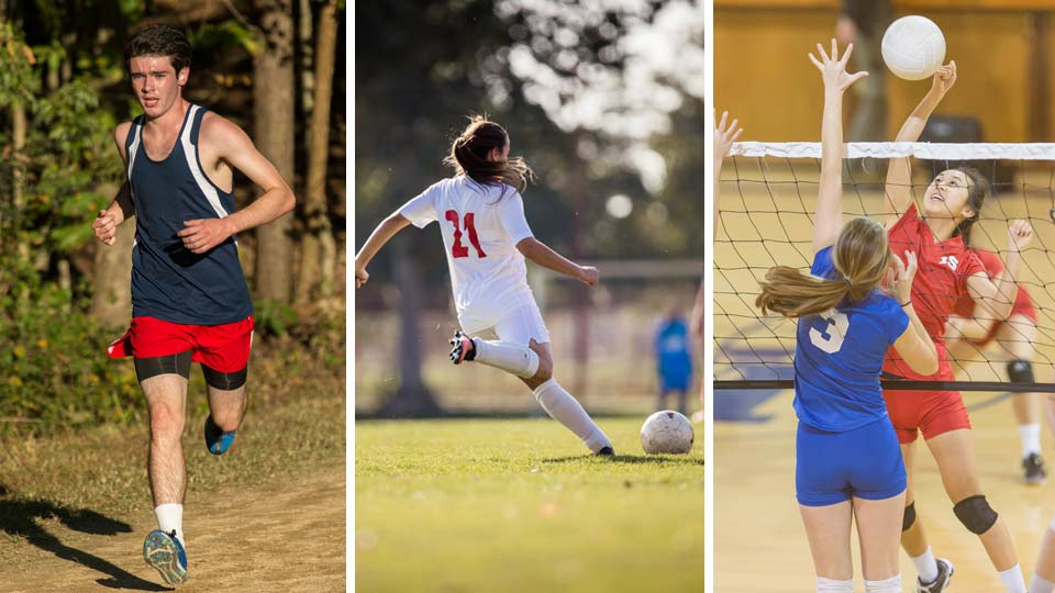 Cross country, Soccer, Volleyball, Fall Sports