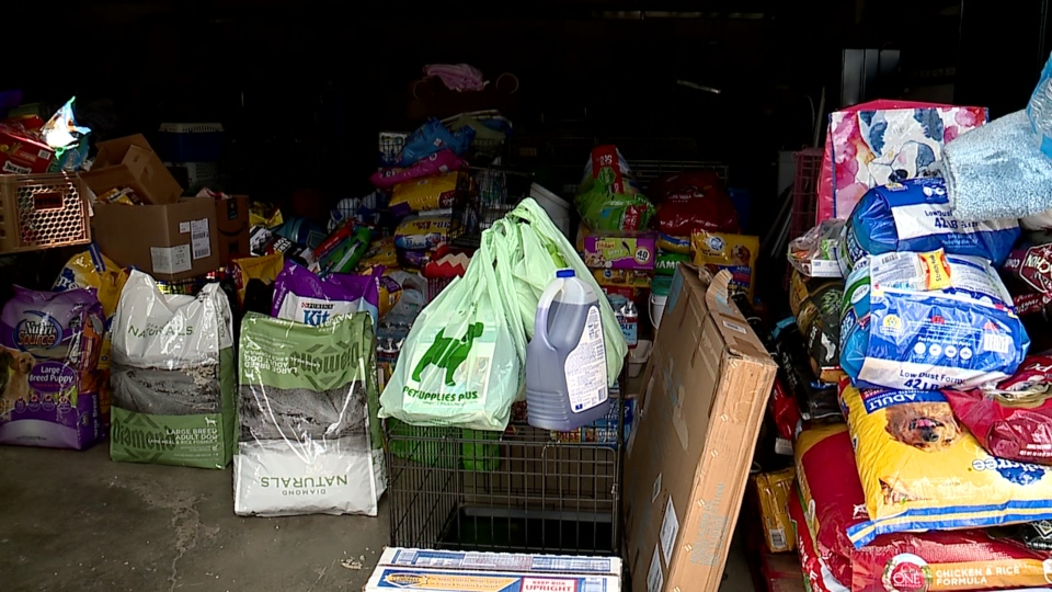 Pet Lodge USA in Boardman collects donations for Columbiana County Humane Society