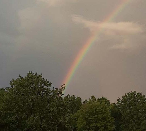 Alice, Canfield, rainbow