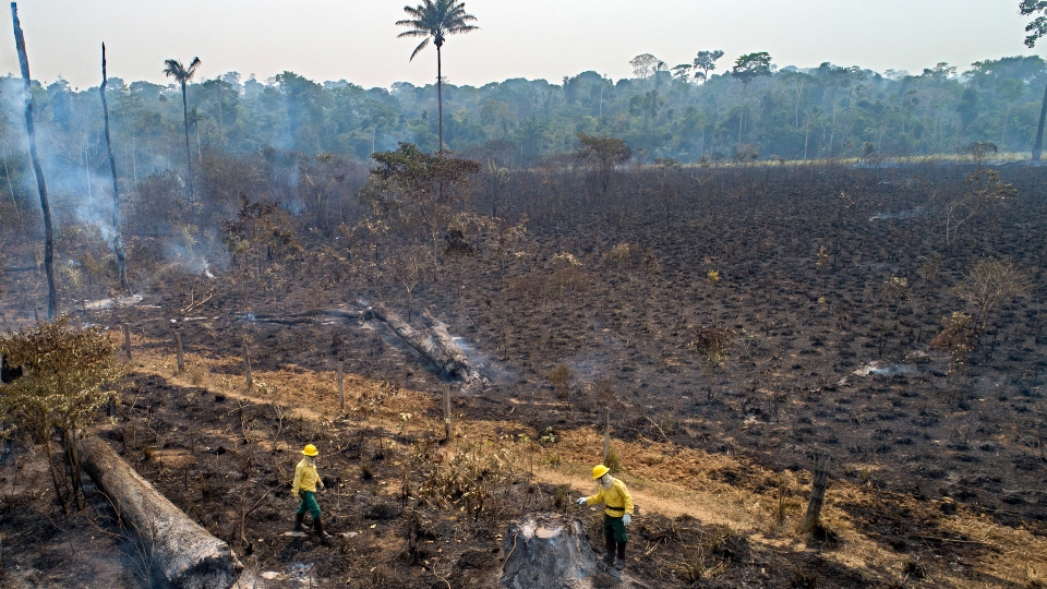 Workers from Brazil's state-run environment agency IBAMA check an area consumed by fire near Novo Progresso, Para state, Brazil, Tuesday, Aug. 18, 2020.
