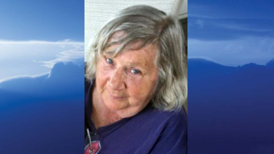 Janet L Scheetz, Youngstown, Ohio - obit