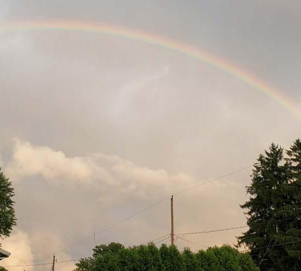 Judy, rainbow